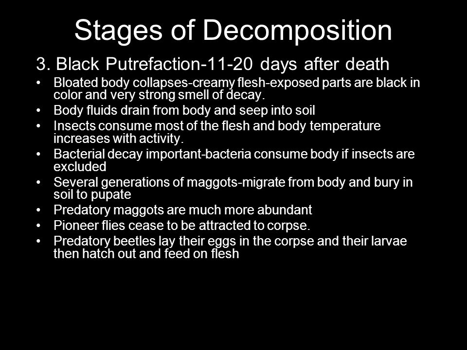 Stages of Decomposition 3. Black Putrefaction-11-20 days after death Bloated body collapses-creamy flesh-exposed parts are black in color and very str