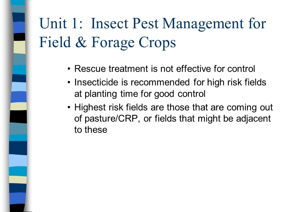 Unit 1: Insect Pest Management for Field & Forage Crops Rescue treatment is not effective for control Insecticide is recommended for high risk fields at planting time for good control Highest risk fields are those that are coming out of pasture/CRP, or fields that might be adjacent to these