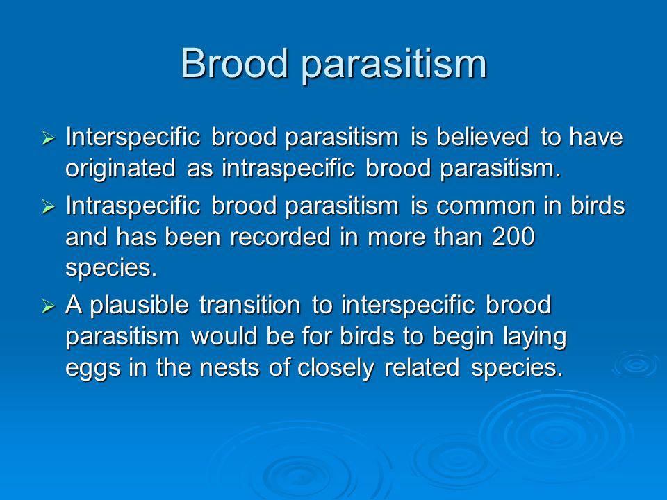 Brood parasitism  Interspecific brood parasitism is believed to have originated as intraspecific brood parasitism.