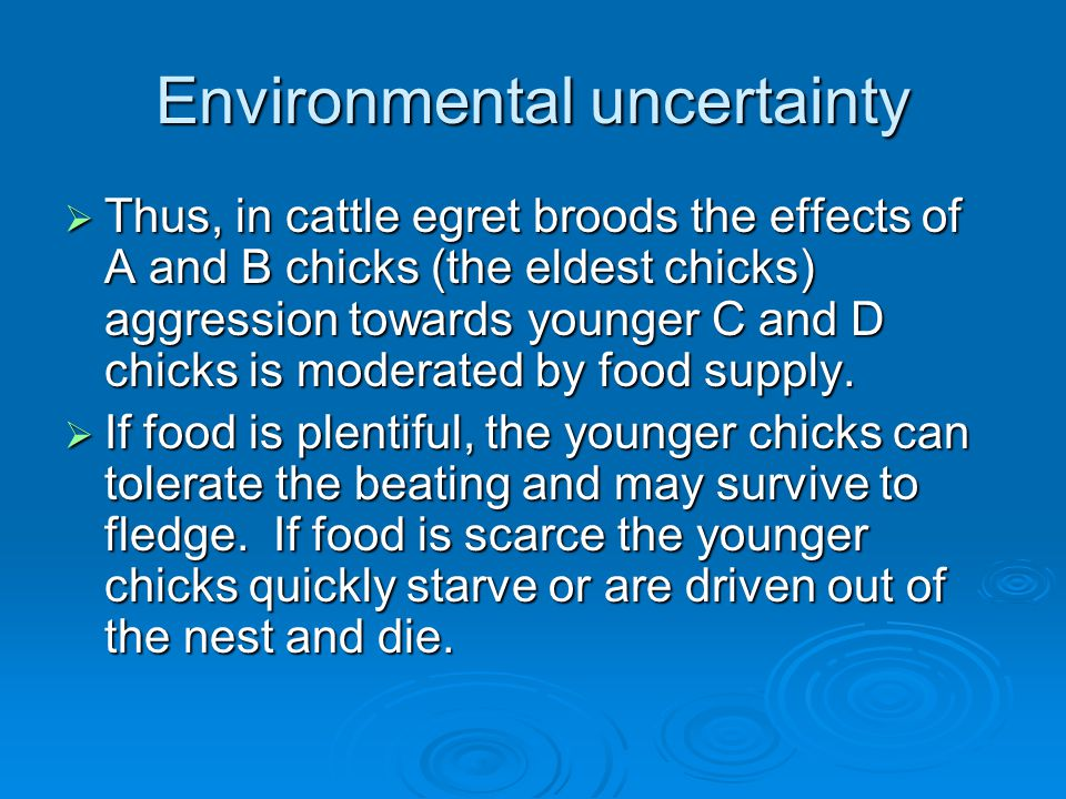 Environmental uncertainty  Thus, in cattle egret broods the effects of A and B chicks (the eldest chicks) aggression towards younger C and D chicks is moderated by food supply.