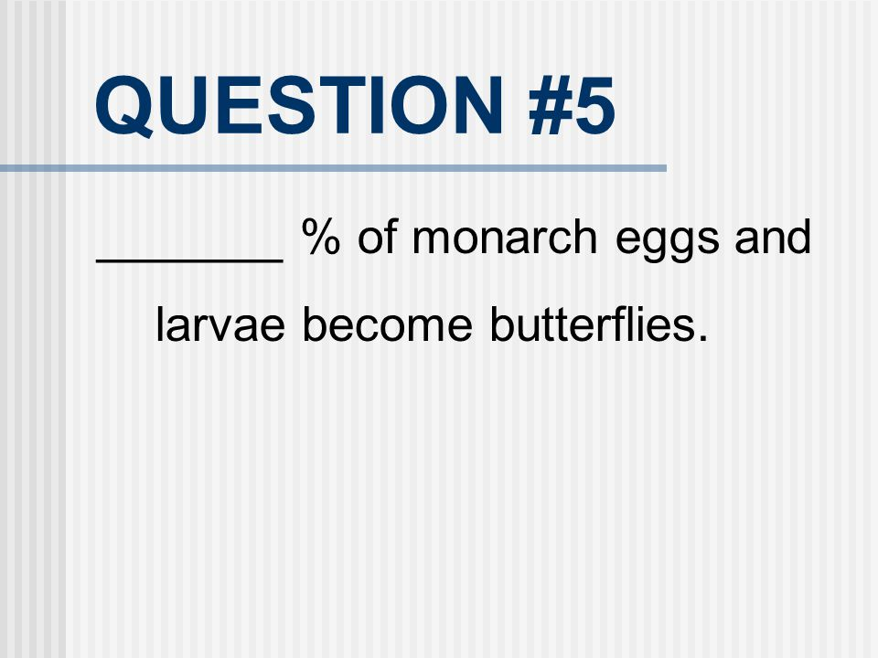QUESTION #5 _______ % of monarch eggs and larvae become butterflies.