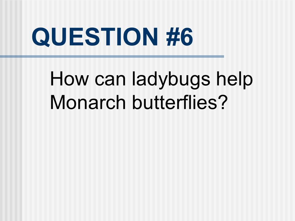 QUESTION #6 How can ladybugs help Monarch butterflies?