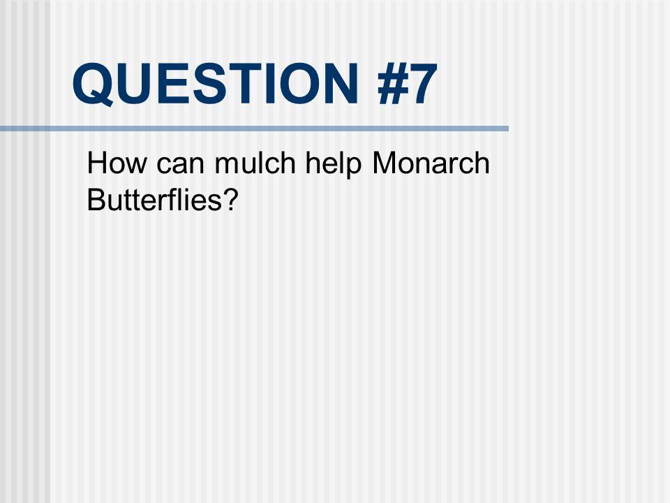 QUESTION #7 How can mulch help Monarch Butterflies?