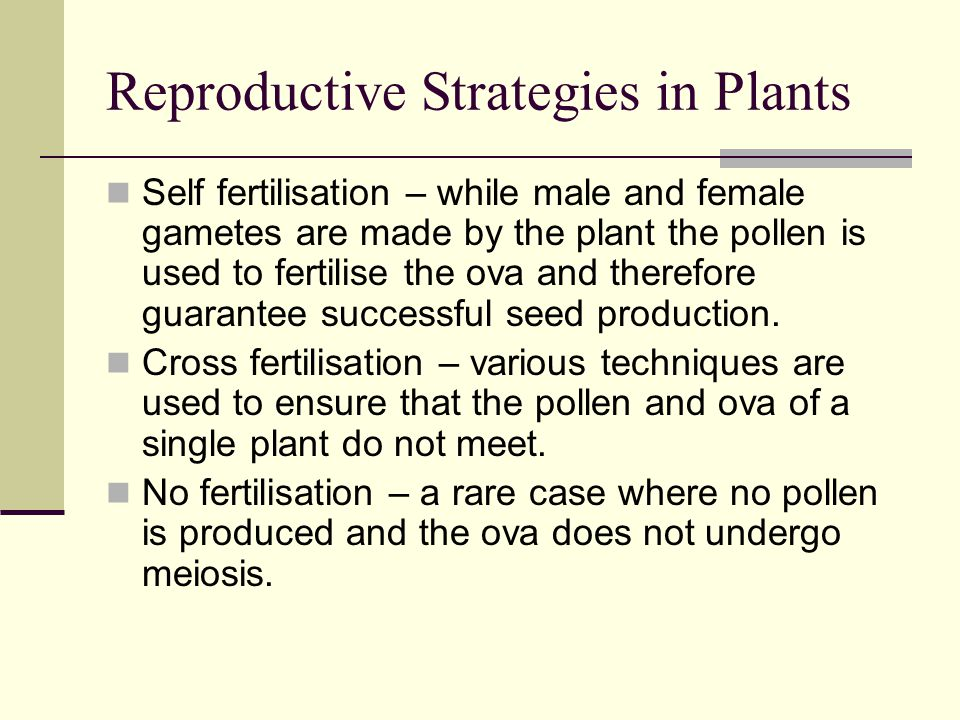 Reproductive Strategies in Plants Self fertilisation – while male and female gametes are made by the plant the pollen is used to fertilise the ova and