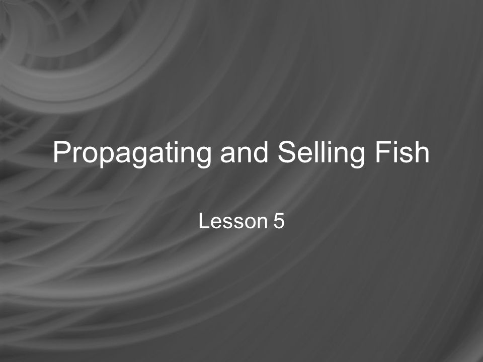 Propagating and Selling Fish What product does a cattle rancher sell.