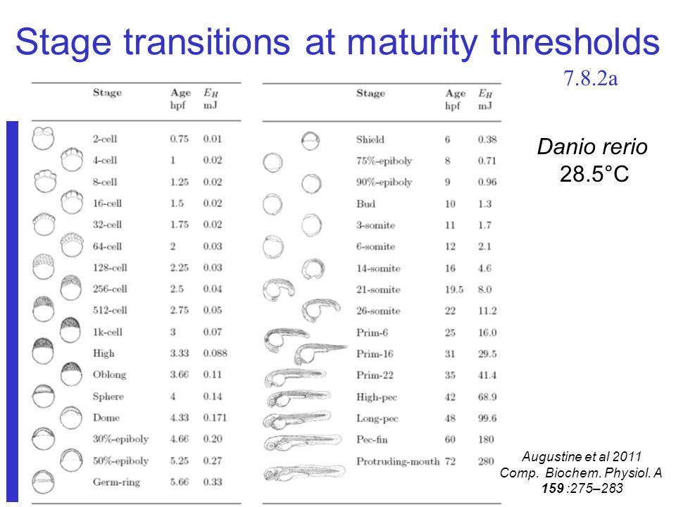 Stage transitions at maturity thresholds Danio rerio 28.5°C Augustine et al 2011 Comp.