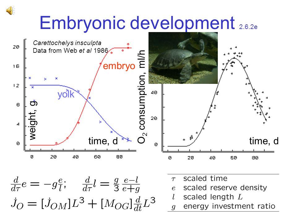 Embryonic development 2.6.2e time, d weight, g O 2 consumption, ml/h Carettochelys insculpta Data from Web et al 1986 yolk embryo