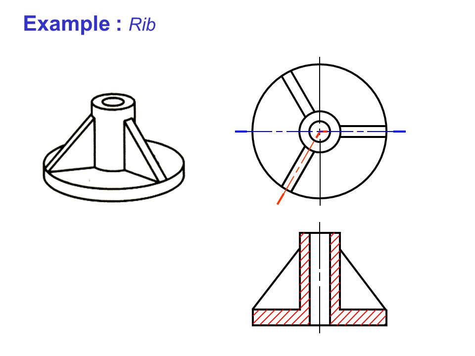 Example : Rib