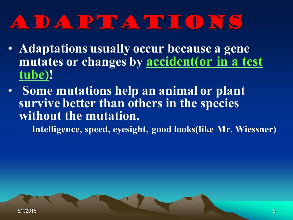 5/1/20155 Adaptations Adaptations usually occur because a gene mutates or changes by accident(or in a test tube) ! Some mutations help an animal or pl