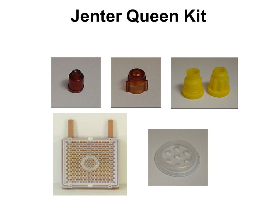 The Jenter Method of Queen Production This system is used to produce young larvae to be subsequently transferred to the cell starter.