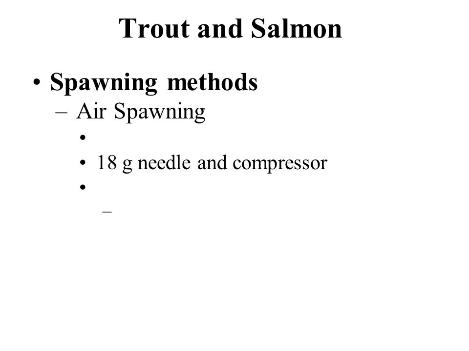 Trout and Salmon Spawning methods – Air Spawning 18 g needle and compressor –