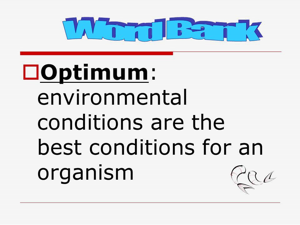 What is the optimum environment for hatching brine shrimp eggs?