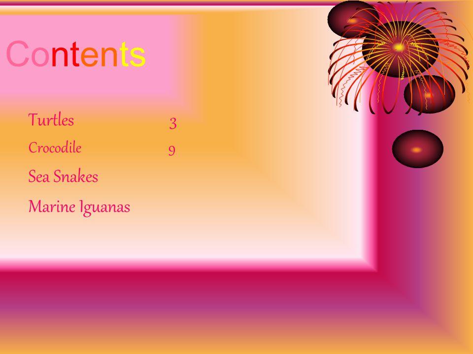 Contents Turtles 3 Crocodile 9 Sea Snakes Marine Iguanas