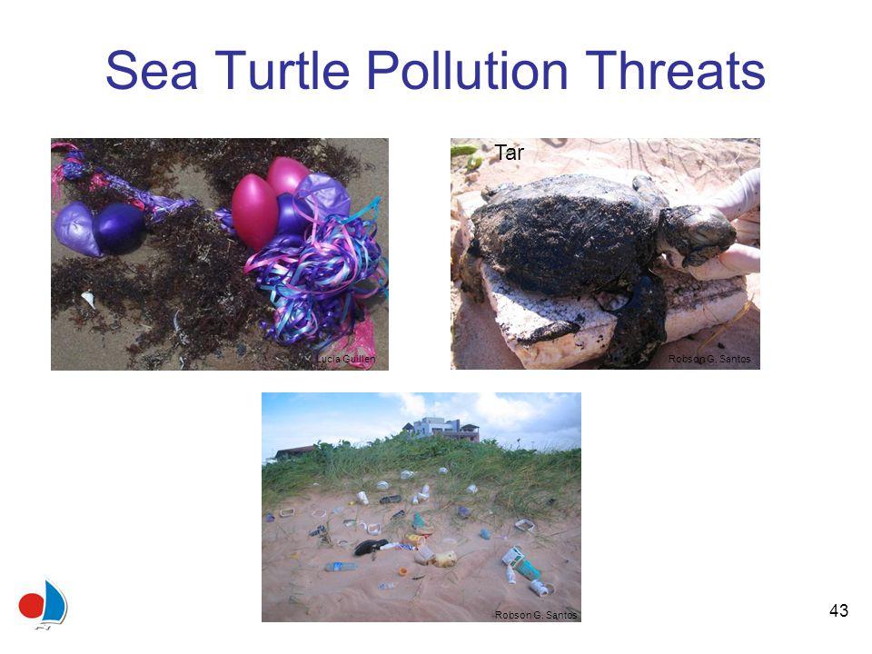 43 Sea Turtle Pollution Threats Lucia Guillen Robson G. Santos Tar