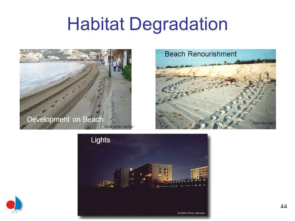 44 Habitat Degradation Kate Mansfield Beach Renourishment Lights Moustakas Vasilios Development on Beach