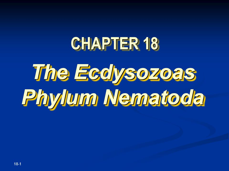 18-1 CHAPTER 18 The Ecdysozoas Phylum Nematoda The Ecdysozoas Phylum Nematoda