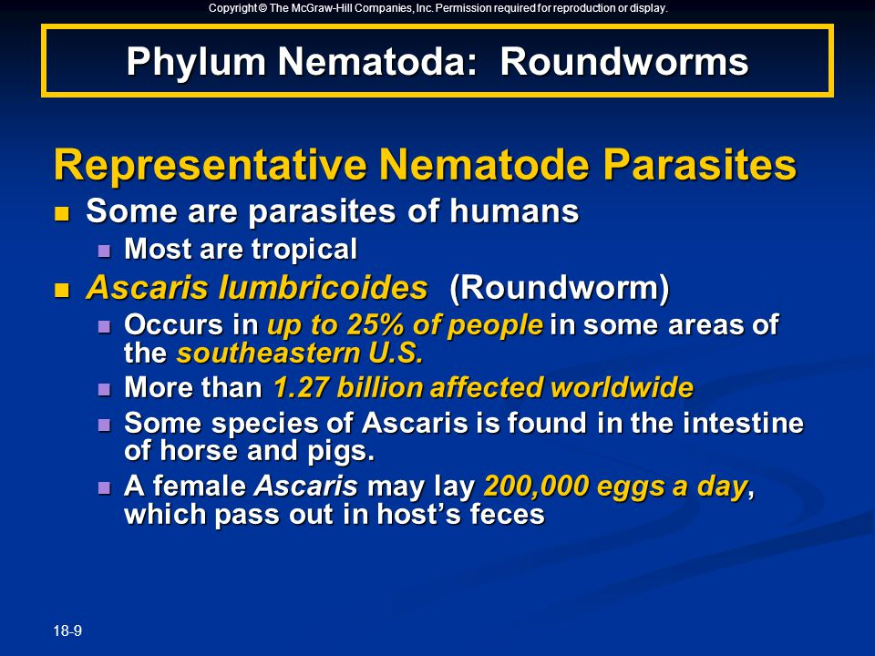 Copyright © The McGraw-Hill Companies, Inc. Permission required for reproduction or display. 18-9 Representative Nematode Parasites Some are parasites