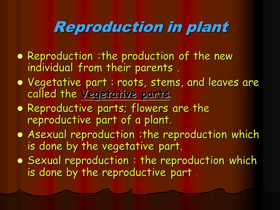 Reproduction in plant Reproduction :the production of the new individual from their parents. Reproduction :the production of the new individual from t
