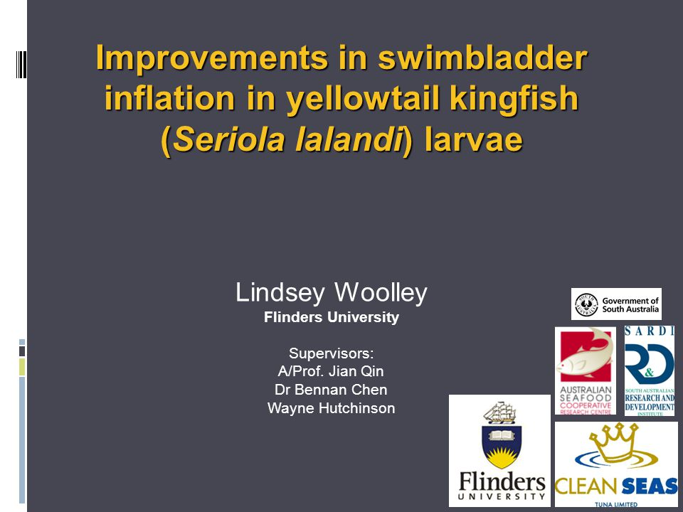 Improvements in swimbladder inflation in yellowtail kingfish (Seriola lalandi) larvae Lindsey Woolley Flinders University Supervisors: A/Prof.