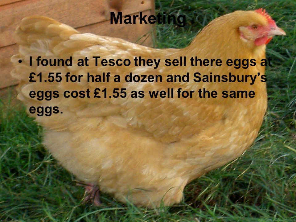 Marketing I found at Tesco they sell there eggs at £1.55 for half a dozen and Sainsbury s eggs cost £1.55 as well for the same eggs.