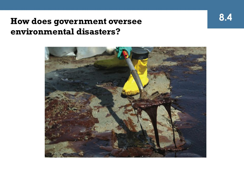 How does government oversee environmental disasters? 8.4