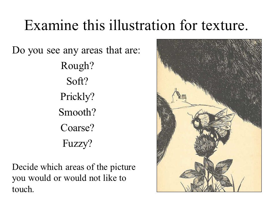 Examine this illustration for texture. Do you see any areas that are: Rough.