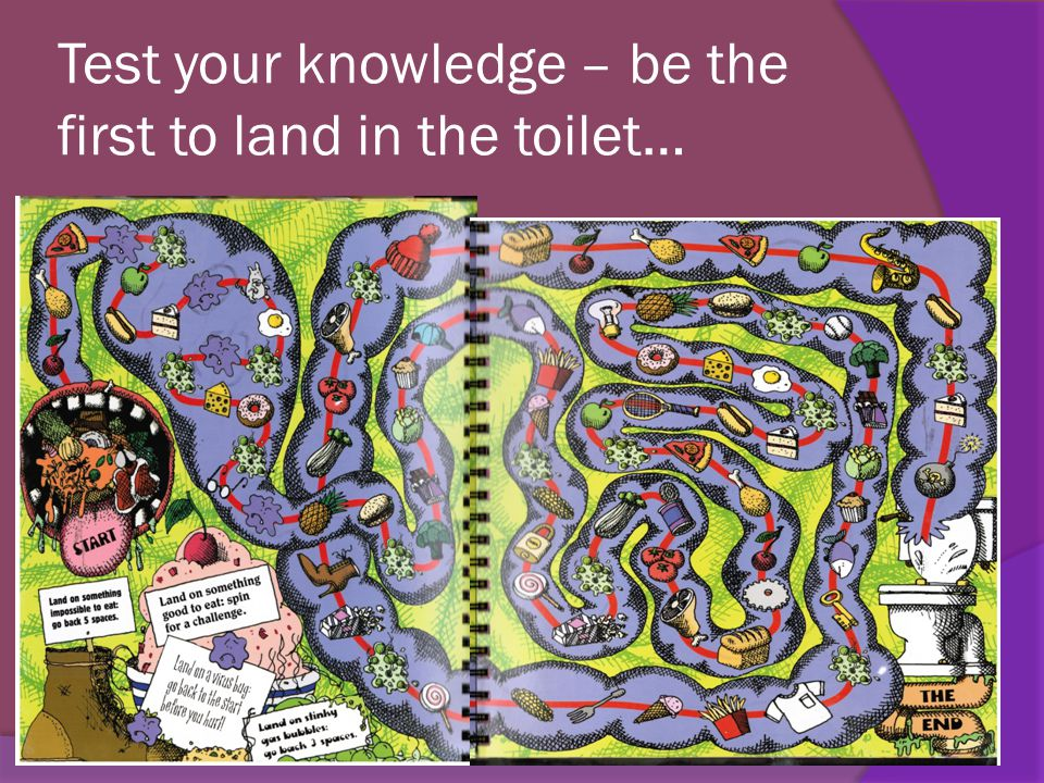 Test your knowledge – be the first to land in the toilet…