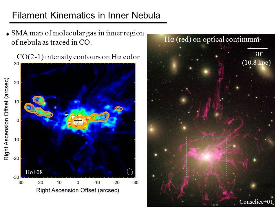 Filament Kinematics in Inner Nebula  SMA map of molecular gas in inner region of nebula as traced in CO.