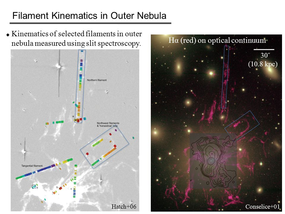 Filament Kinematics in Outer Nebula  Kinematics of selected filaments in outer nebula measured using slit spectroscopy.