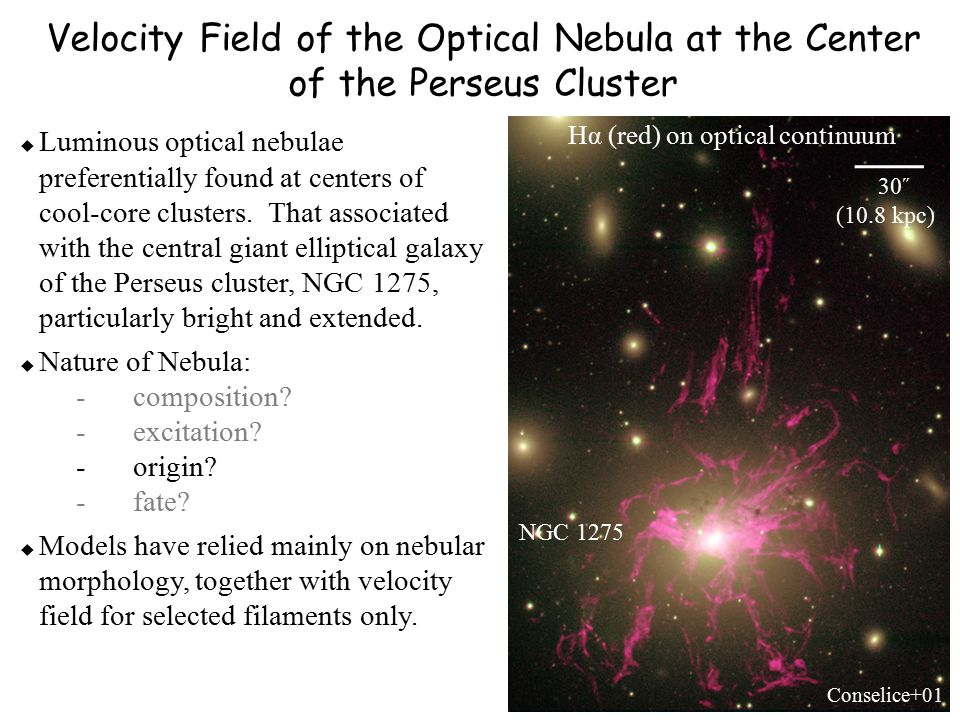 Velocity Field of the Optical Nebula at the Center of the Perseus Cluster Hα (red) on optical continuum 30˝ (10.8 kpc) Conselice+01 NGC 1275  Luminous optical nebulae preferentially found at centers of cool-core clusters.