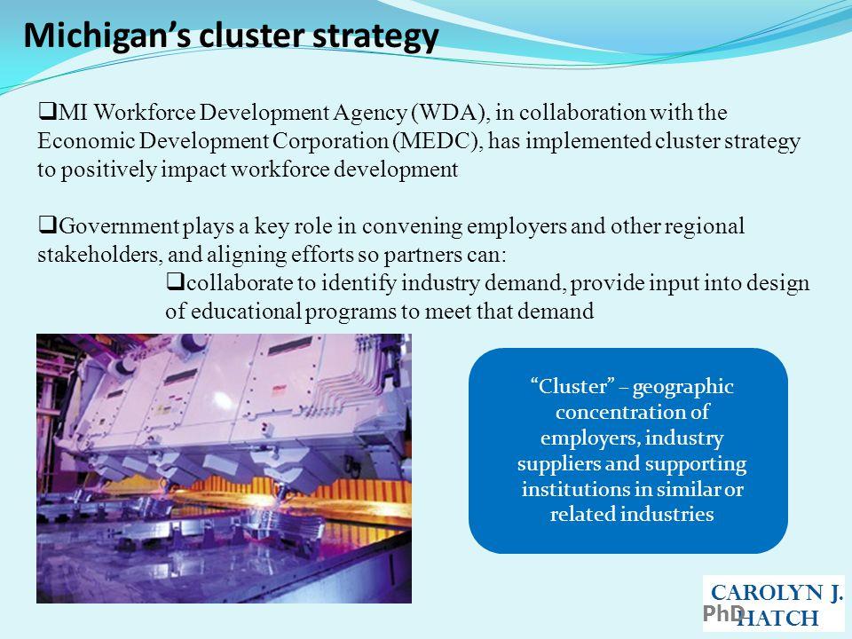 Michigan's cluster strategy CAROLYN J.
