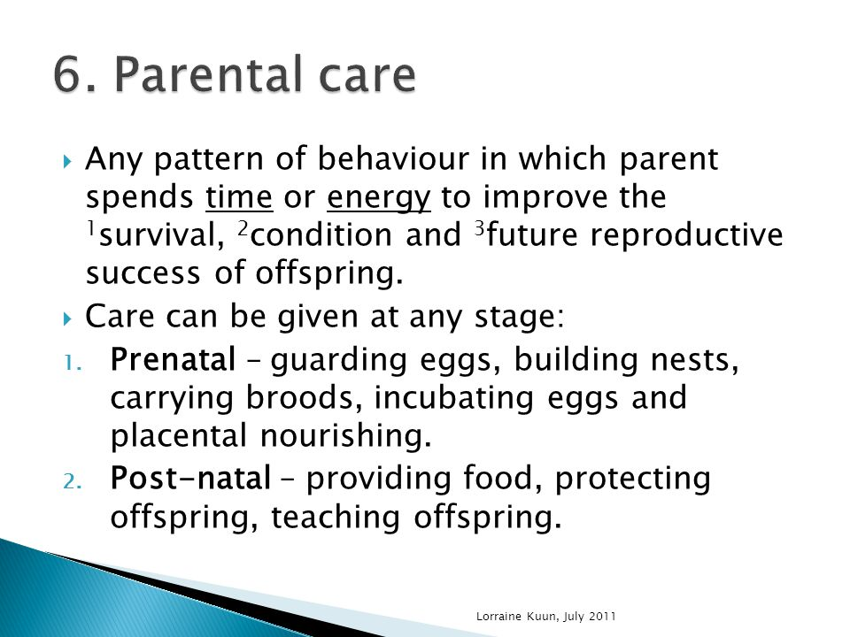  Any pattern of behaviour in which parent spends time or energy to improve the 1 survival, 2 condition and 3 future reproductive success of offspring.