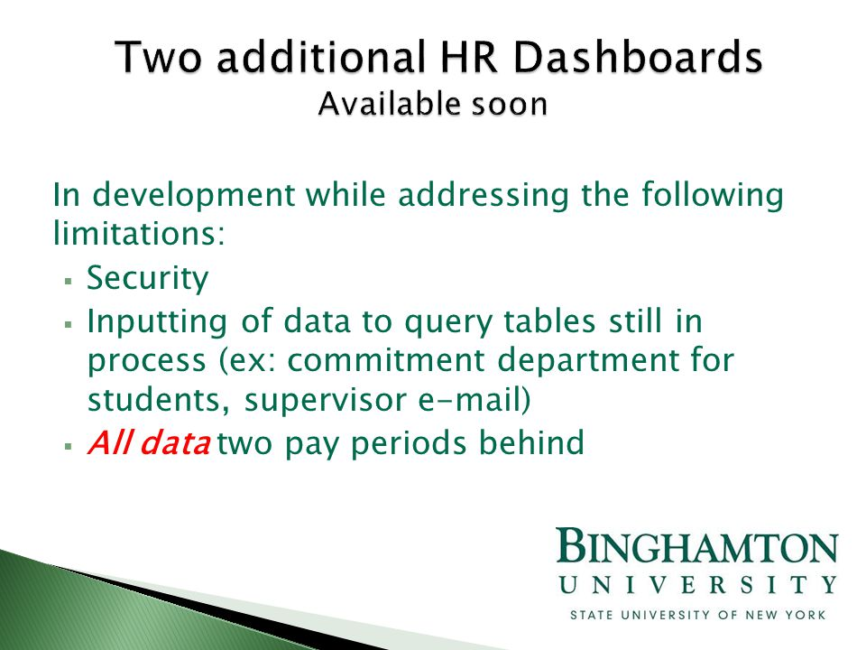 In development while addressing the following limitations:  Security  Inputting of data to query tables still in process (ex: commitment department for students, supervisor e-mail)  All data two pay periods behind