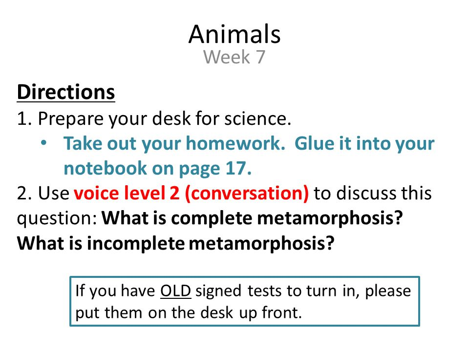 Targets & Warm Up Targets: Students will compare and contrast animal changes in… – Embryonic development – Complete metamorphosis – Incomplete metamorphosis Warm Up: How are complete and incomplete metamorphosis similar.