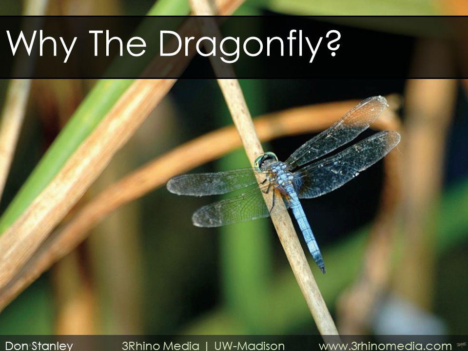 Why The Dragonfly? Don Stanley 3Rhino Media | UW-Madison www.3rhinomedia.com