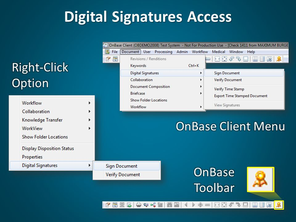 Digital Signatures Access
