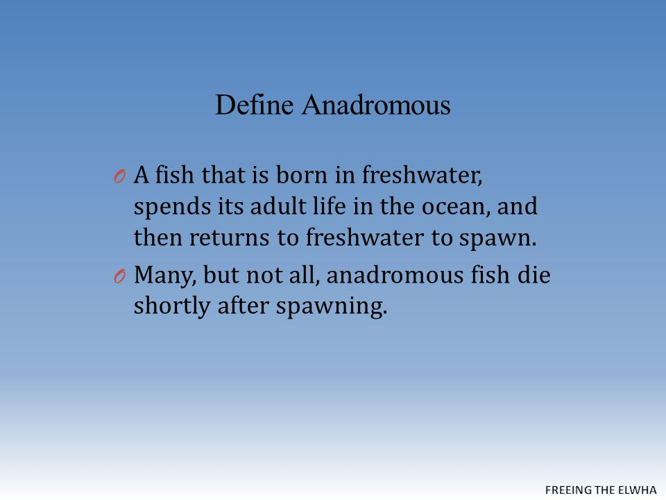 Define Anadromous O A fish that is born in freshwater, spends its adult life in the ocean, and then returns to freshwater to spawn.