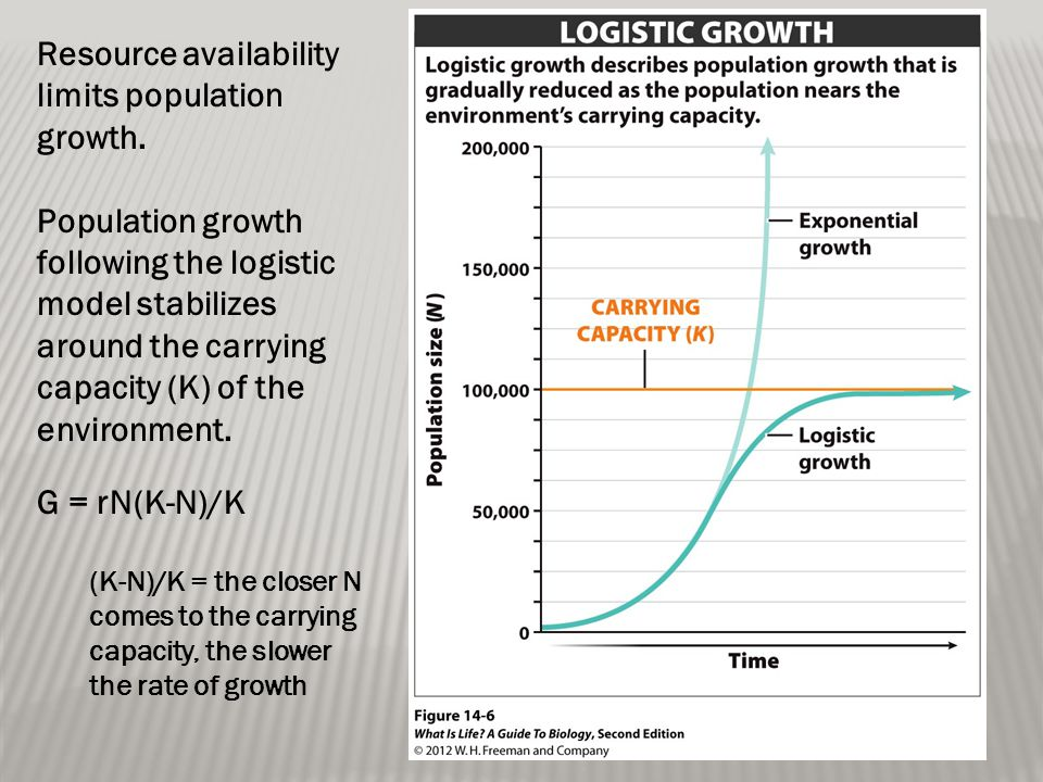Resource availability limits population growth. Population growth following the logistic model stabilizes around the carrying capacity (K) of the envi
