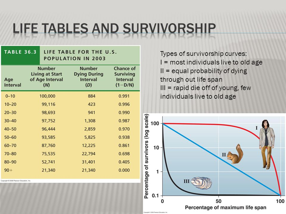 Types of survivorship curves: I = most individuals live to old age II = equal probability of dying through out life span III = rapid die off of young,