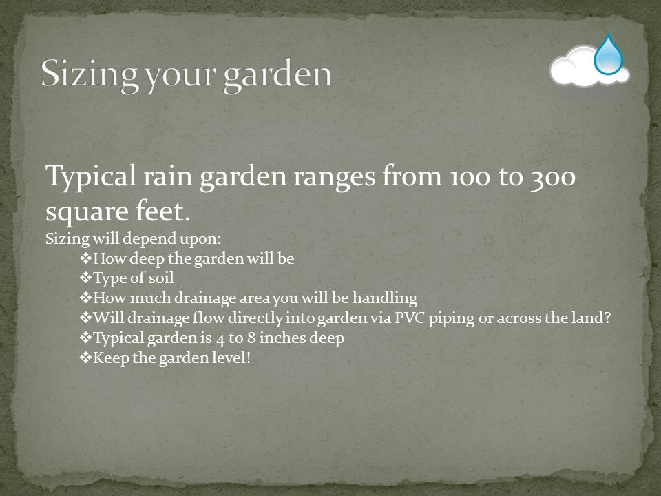 Typical rain garden ranges from 100 to 300 square feet. Sizing will depend upon:  How deep the garden will be  Type of soil  How much drainage area