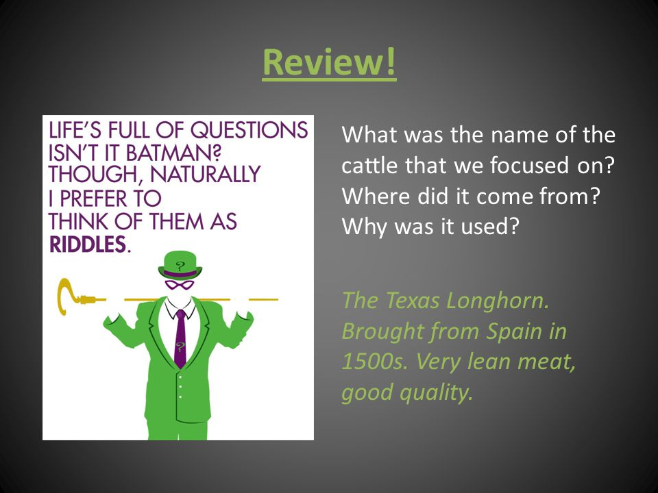 Review! What was the name of the cattle that we focused on? Where did it come from? Why was it used? The Texas Longhorn. Brought from Spain in 1500s.