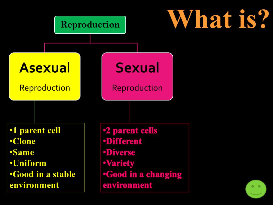 Use the words to describe each type of reproduction Reproduction AsexualSexual Changing environment Clone Different Diverse Same Stable environment Un