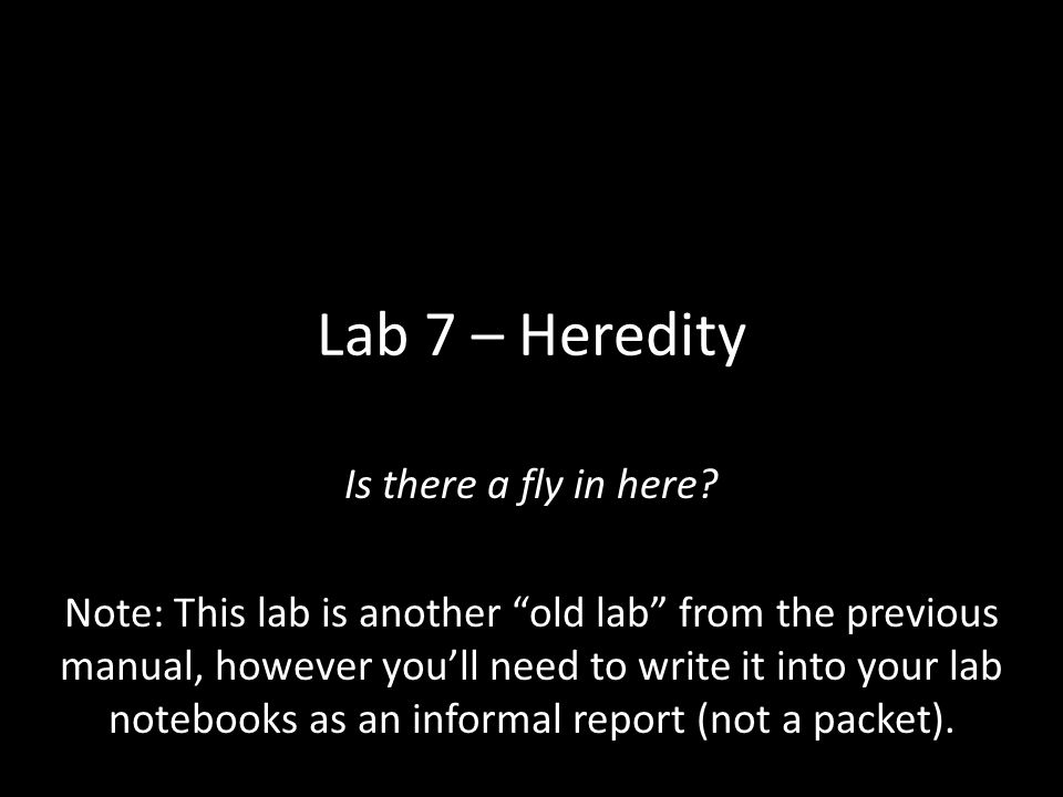 "Lab 7 – Heredity Is there a fly in here? Note: This lab is another ""old lab"" from the previous manual, however you'll need to write it into your lab n"