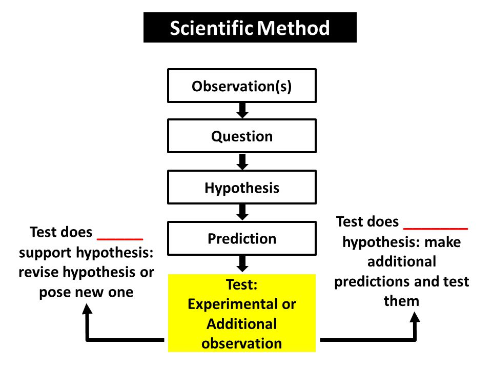 Scientific Method Observation(s) Question Hypothesis Prediction Test: Experimental or Additional observation Test does _____ support hypothesis: revise hypothesis or pose new one Test does _______ hypothesis: make additional predictions and test them