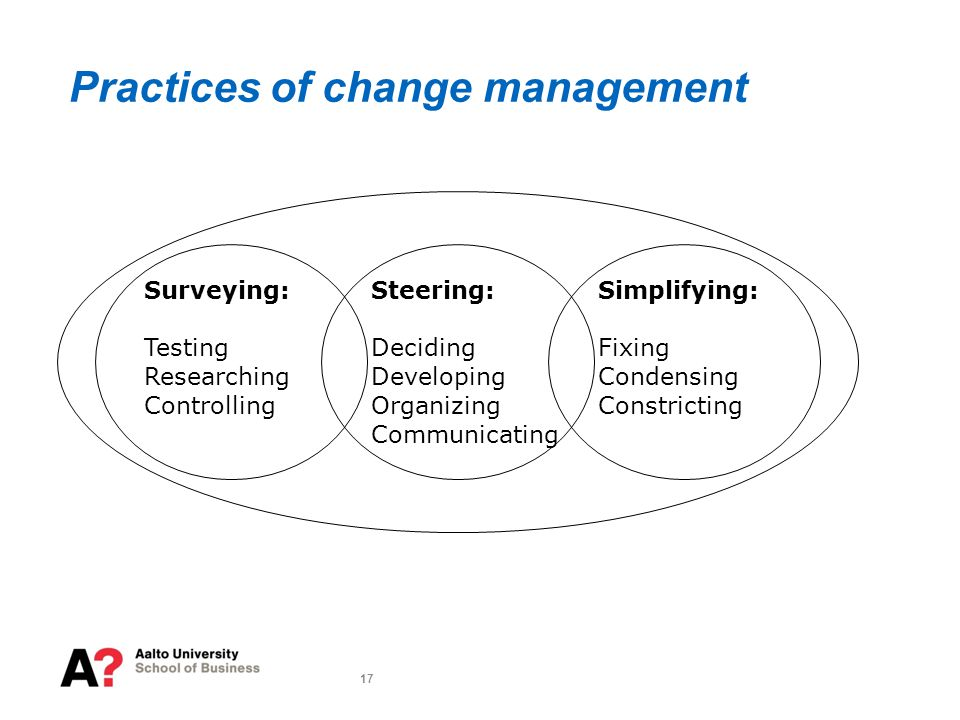 17 Practices of change management Surveying: Testing Researching Controlling Steering: Deciding Developing Organizing Communicating Simplifying: Fixing Condensing Constricting