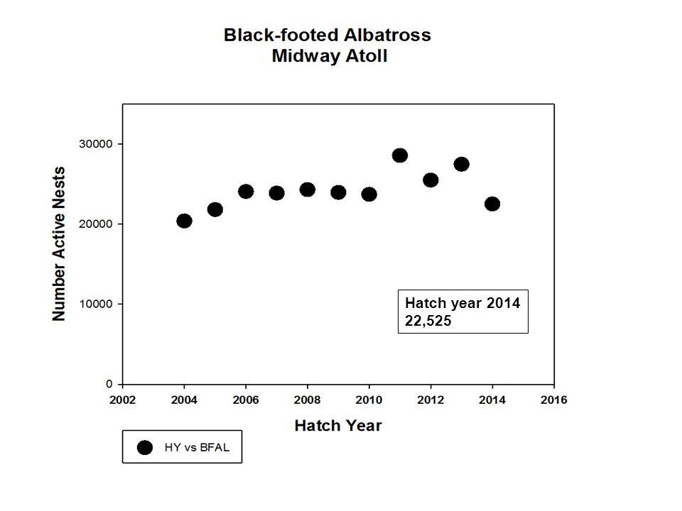 Hatch year 2014 412,776 nests,