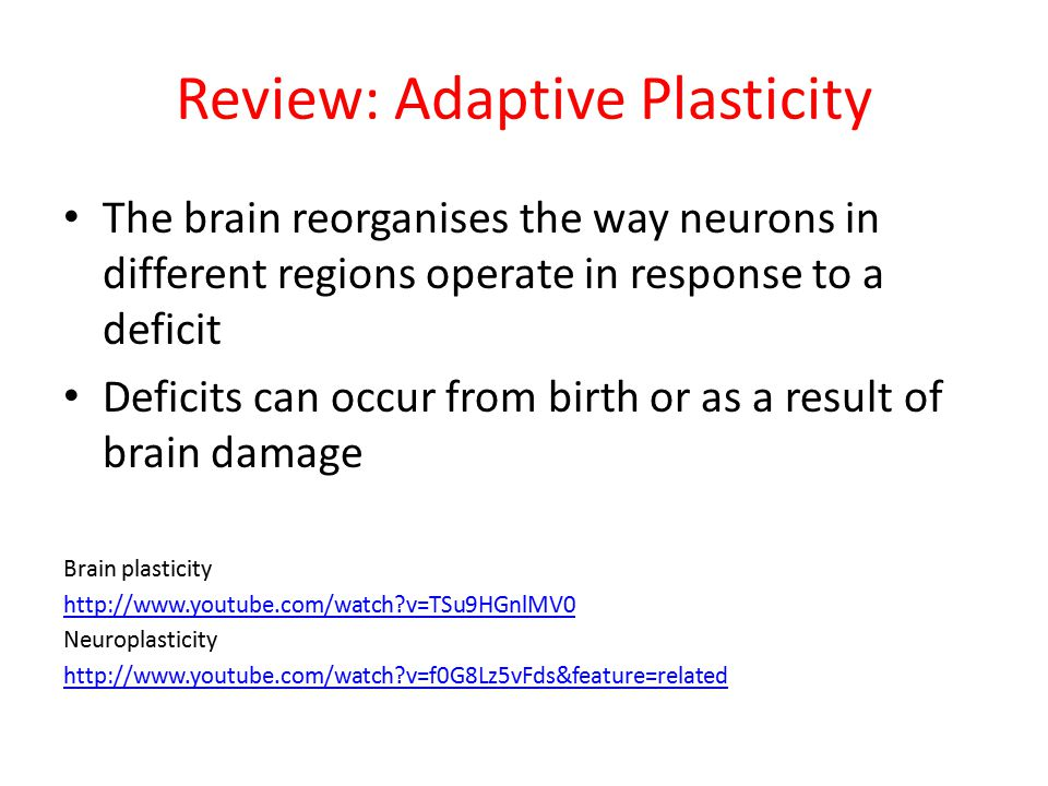 Review: Adaptive Plasticity The brain reorganises the way neurons in different regions operate in response to a deficit Deficits can occur from birth