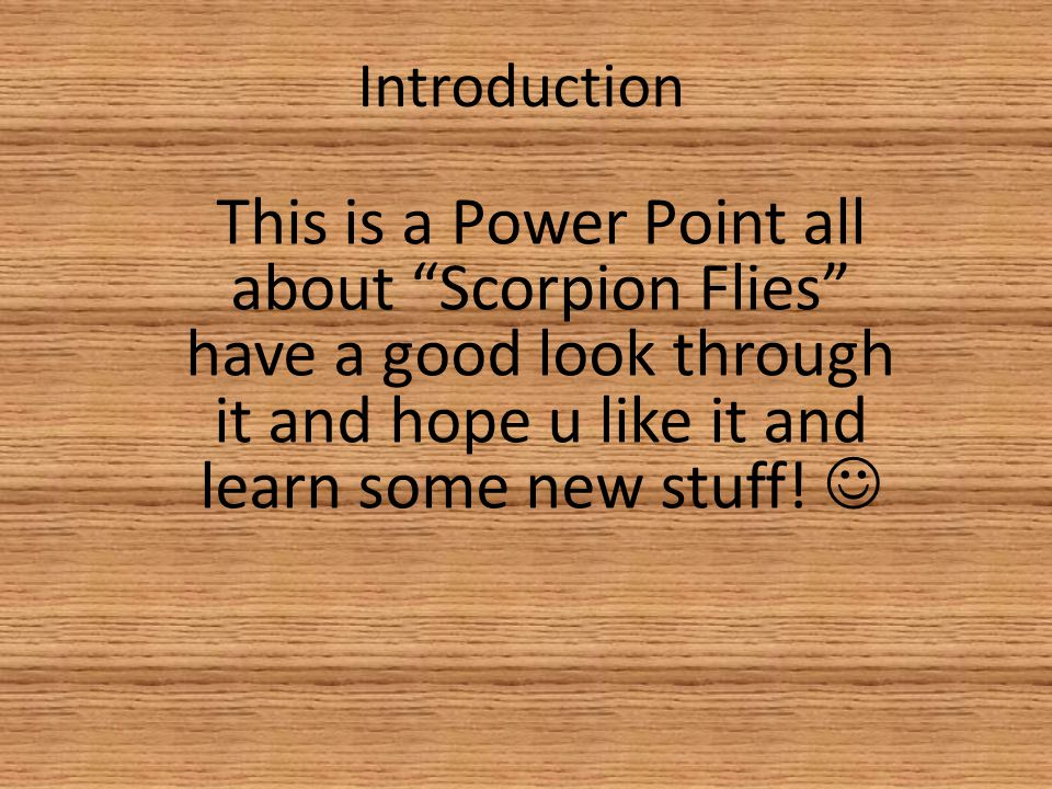 """Introduction This is a Power Point all about """"Scorpion Flies"""" have a good look through it and hope u like it and learn some new stuff!"""
