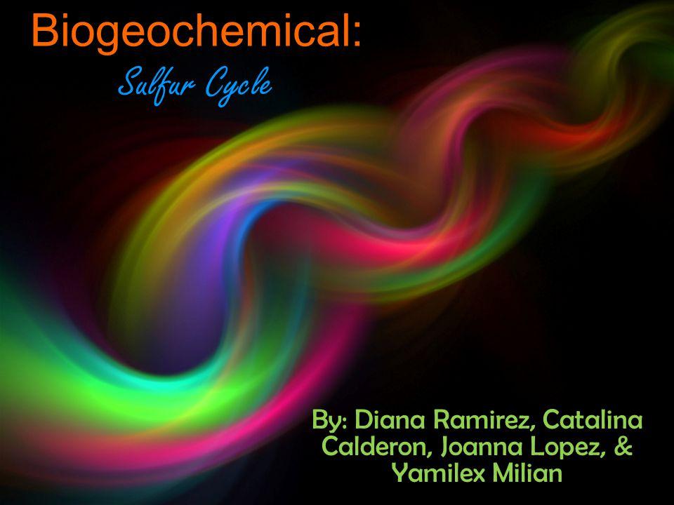 Biogeochemical: Sulfur Cycle By: Diana Ramirez, Catalina Calderon, Joanna Lopez, & Yamilex Milian