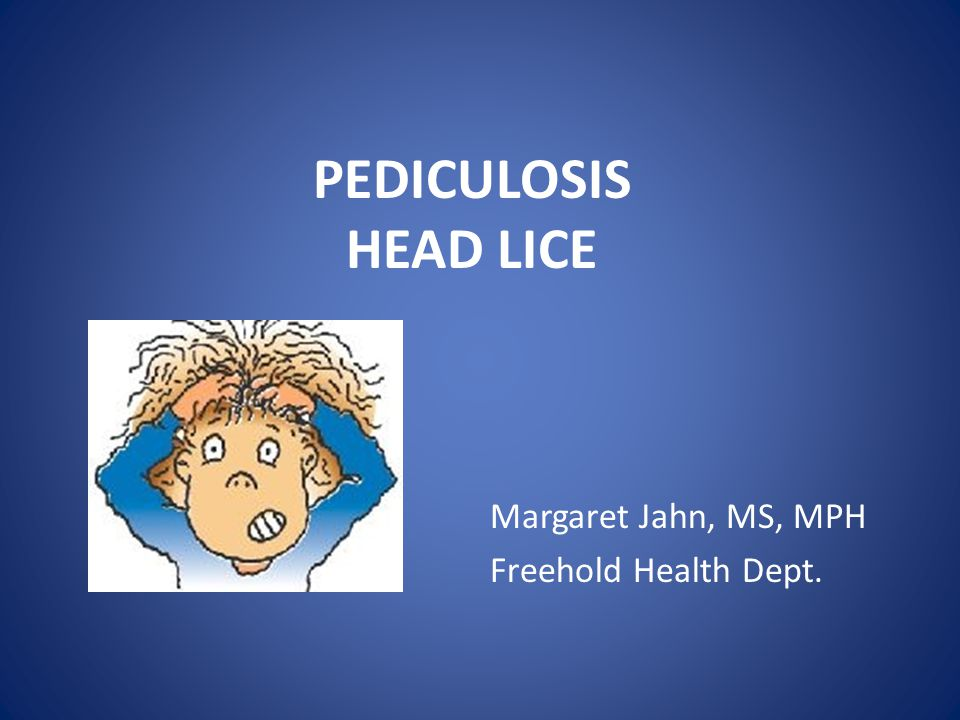 PEDICULOSIS HEAD LICE Margaret Jahn, MS, MPH Freehold Health Dept.